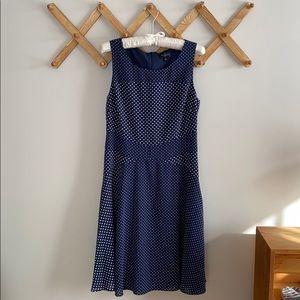 The Limited Navy + Polka Dot Swing Dress